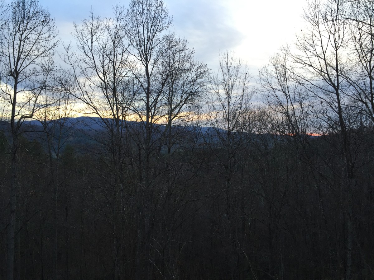 View from the deck of a sunrise